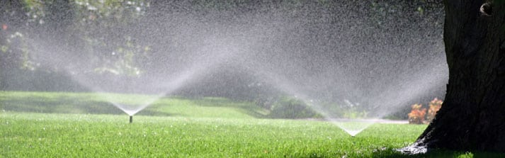 The Go-To Guide to Common Sprinkler Repair Issues