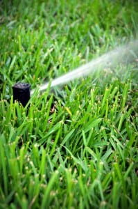 Tampa, Brandon, Wesley Chapel, Plant City Sprinkler Repair