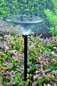 Beautiful Sprinklers